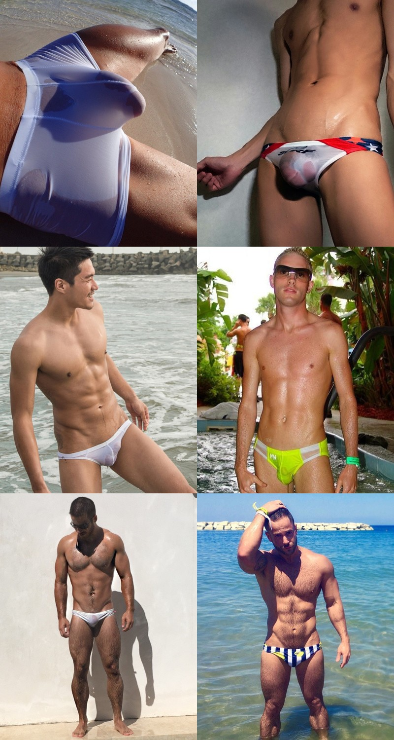 Daily wet speedo asses the dead free