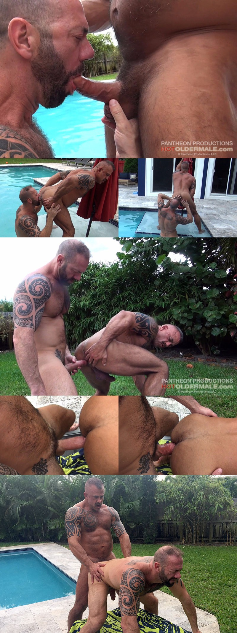 Husbands Fucking Raw by the Pool