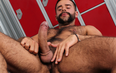 Hairy Teddy Torres