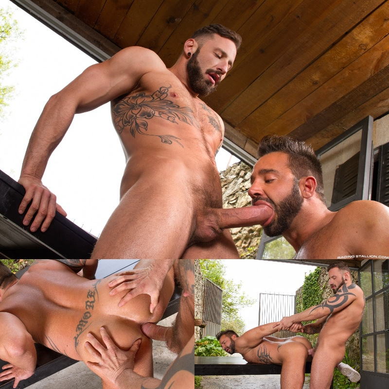 Raging Stallion: Hung Country