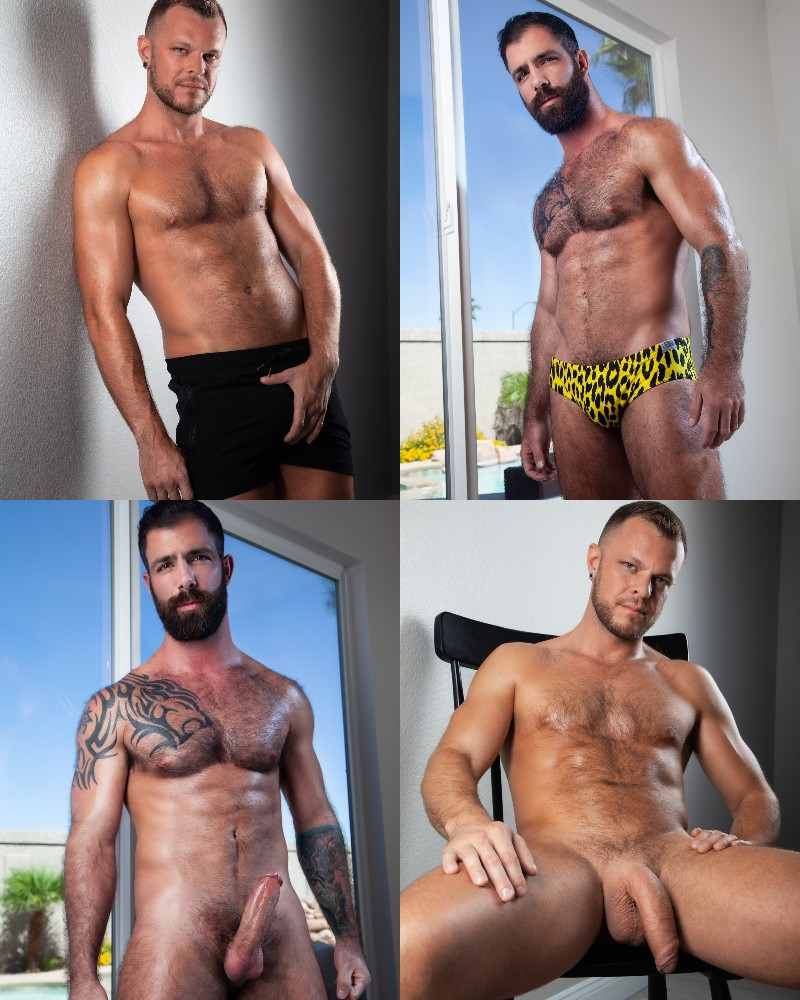 Nicola Porn Pics hung & furry hunks wade wolfgar & jake nicola blow one