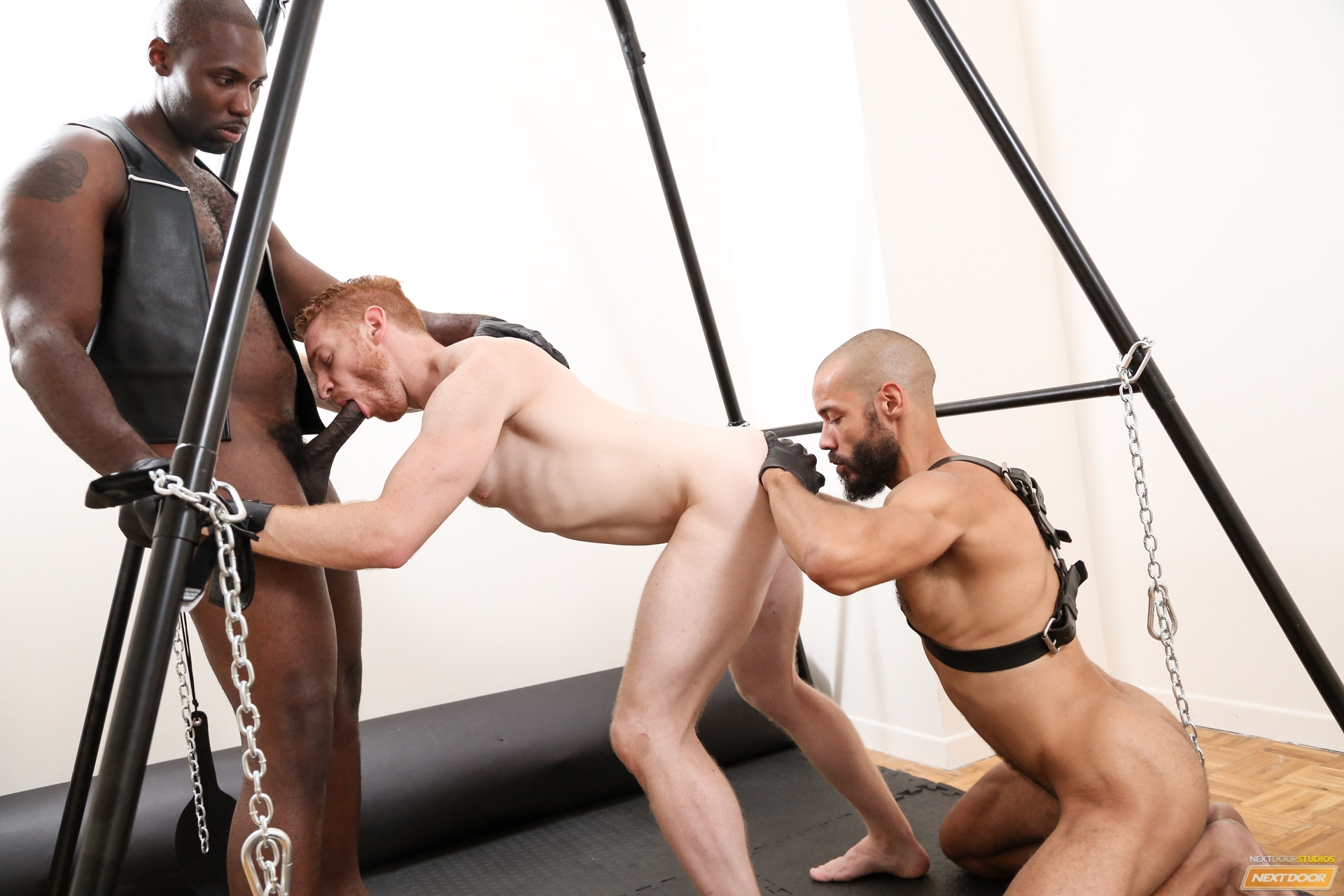 free gay videos lust puppy