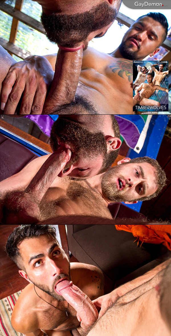 Hairy Hung Men - Hump Day Hotties