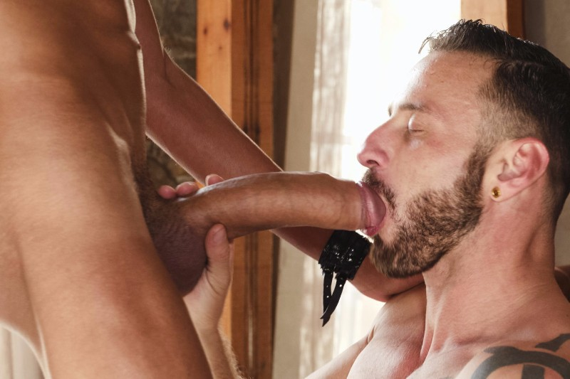 Gay porn biggest cocks