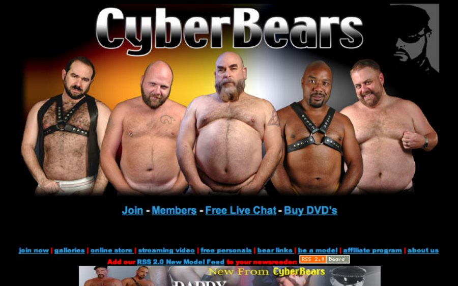Cyber Bears tour page screenshot
