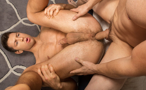 Randy deep-penetrates Shaw's hairy pink hole!